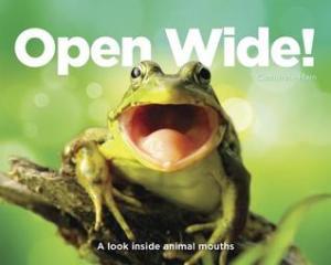 OpenWide