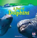 podofdolphins